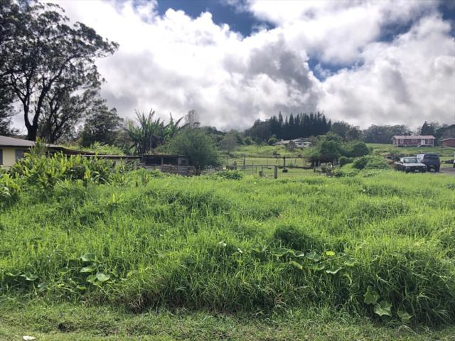 Puu Pulehu Lp, Kamuela, HI 96743 (MLS #628091) :: LUVA Real Estate