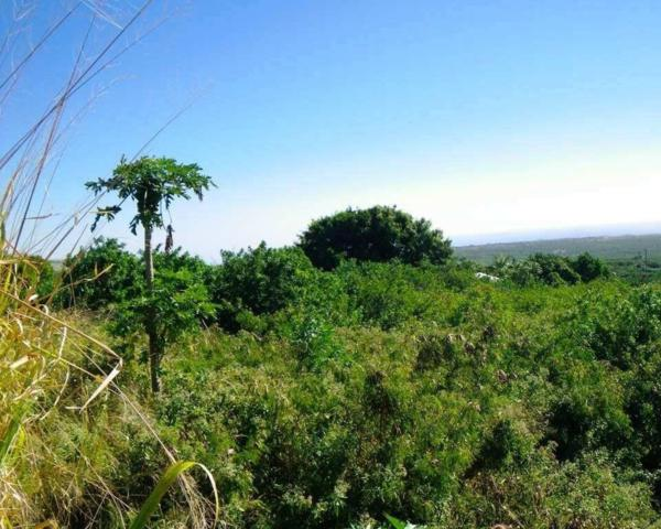 Address Not Published, Naalehu, HI 96772 (MLS #628097) :: Song Real Estate Team/Keller Williams Realty Kauai