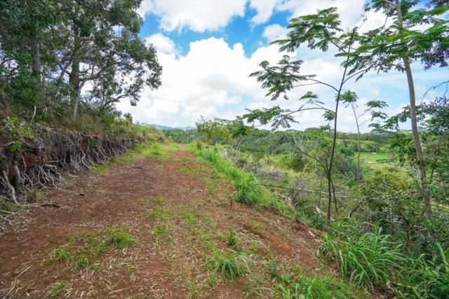 Uilama Pl, Kapaa, HI 96746 (MLS #628144) :: Elite Pacific Properties