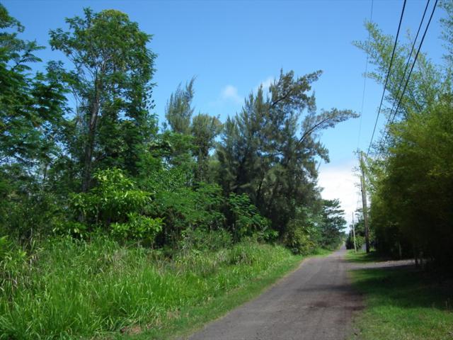 14TH AVE, Keaau, HI 96749 (MLS #628198) :: Aloha Kona Realty, Inc.