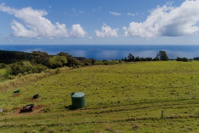 Address Not Published, Laupahoehoe, HI 96764 (MLS #628211) :: Song Real Estate Team | LUVA Real Estate