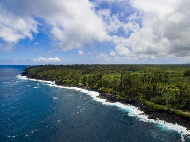 Old Government Rd, Pahoa, HI 96778 (MLS #628220) :: Aloha Kona Realty, Inc.