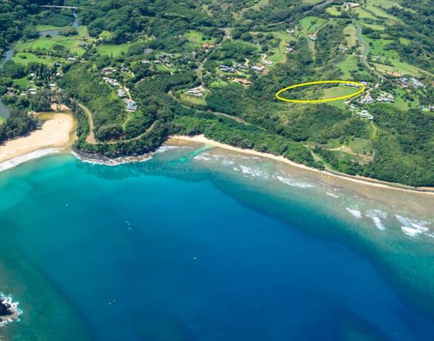 Anini Vista Dr, Kilauea, HI 96754 (MLS #628242) :: Kauai Exclusive Realty