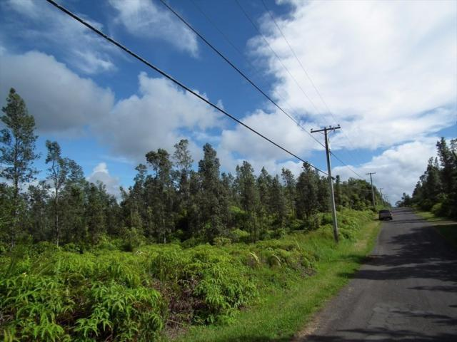 Address Not Published, Mountain View, HI 96771 (MLS #628301) :: Team Lally