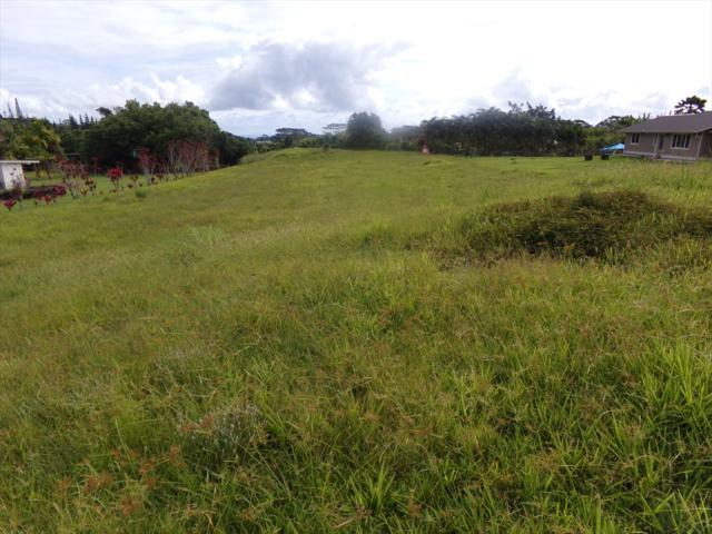17-447 Volcano Rd, Kurtistown, HI 96760 (MLS #628430) :: Elite Pacific Properties