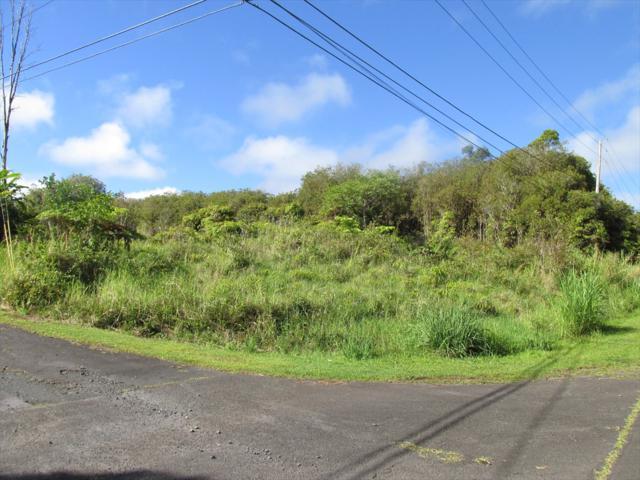 18-4153 Hinuhinu St, Volcano, HI 96785 (MLS #628488) :: Song Real Estate Team/Keller Williams Realty Kauai