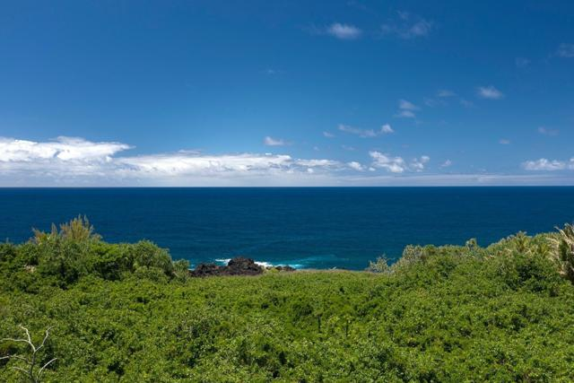 Government Beach Rd, Pahoa, HI 96778 (MLS #628559) :: Aloha Kona Realty, Inc.