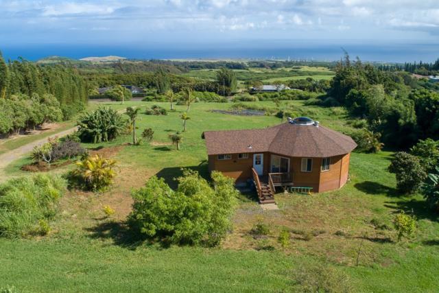 56-3194 Puu Mamo Dr, Hawi, HI 96719 (MLS #628581) :: Aloha Kona Realty, Inc.