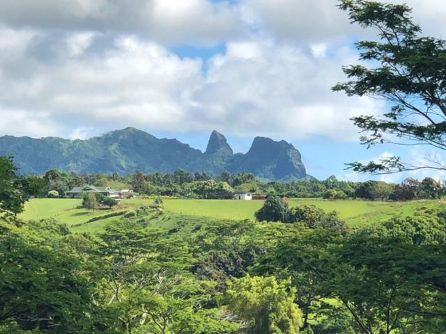 Address Not Published, Kapaa, HI 96746 (MLS #628639) :: Kauai Exclusive Realty