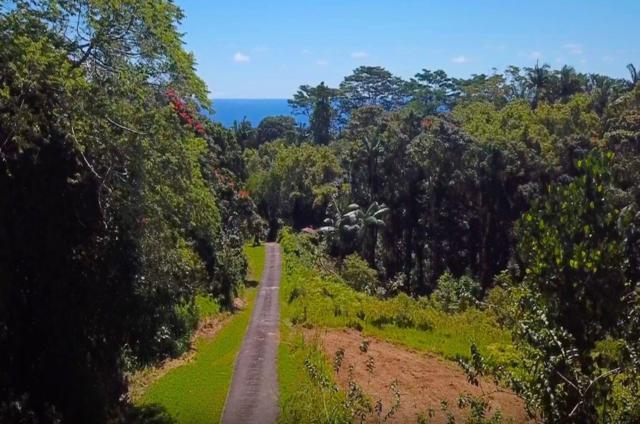 27-2430 Hawaii Belt Rd, Papaikou, HI 96781 (MLS #628654) :: Corcoran Pacific Properties