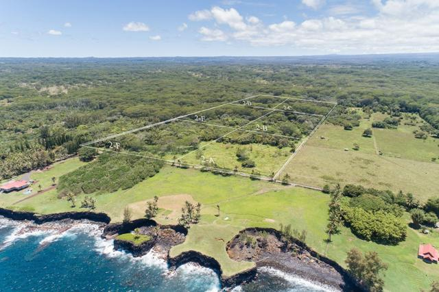 15-2236 Government Beach Rd, Pahoa, HI 96778 (MLS #628701) :: Song Real Estate Team/Keller Williams Realty Kauai