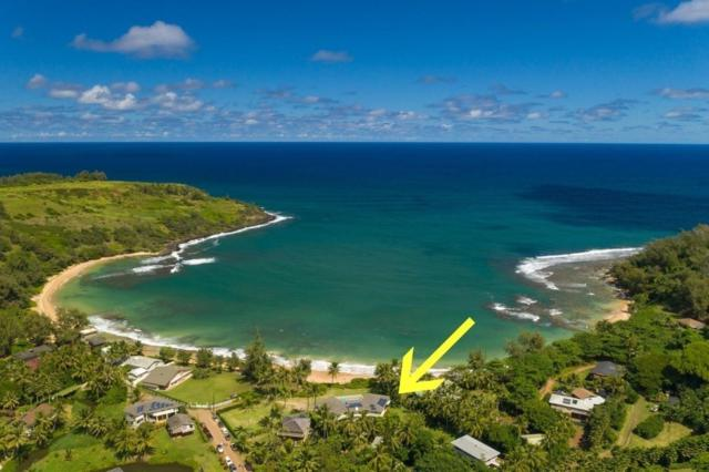 3561-A Moloaa Rd, Anahola, HI 96703 (MLS #628735) :: Elite Pacific Properties