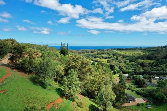 Kaumualii Hwy, Kalaheo, HI 96741 (MLS #628746) :: Kauai Exclusive Realty