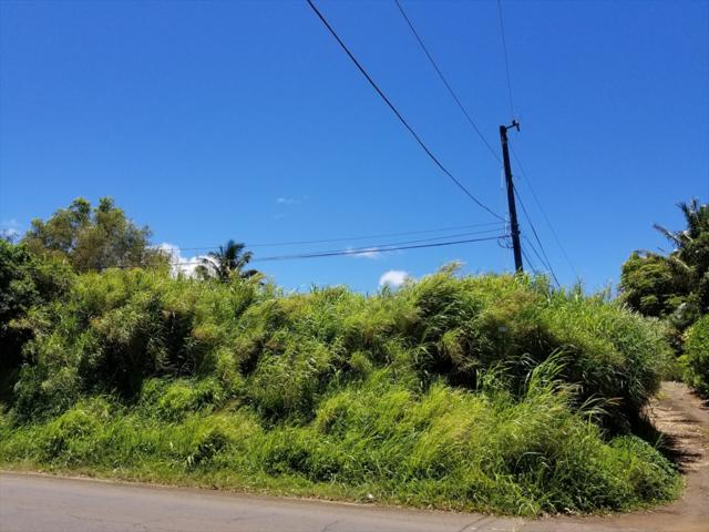 Akoni Pule Hwy, Hawi, HI 96719 (MLS #628747) :: Elite Pacific Properties