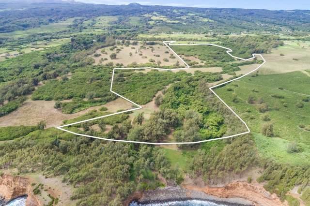 53-4429 Akoni Pule Hwy, Kapaau, HI 96755 (MLS #628830) :: Elite Pacific Properties