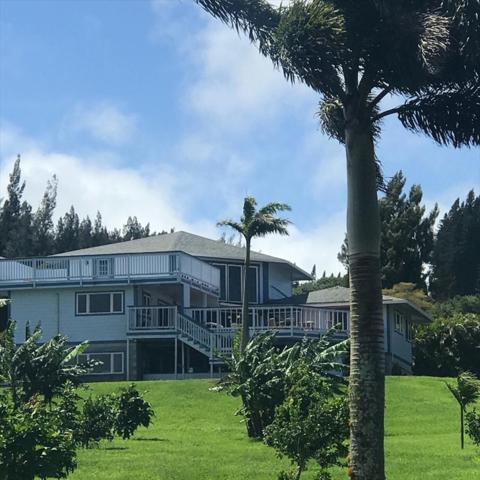 56-3156 Puu Mamo Dr, Hawi, HI 96719 (MLS #628912) :: Song Real Estate Team/Keller Williams Realty Kauai