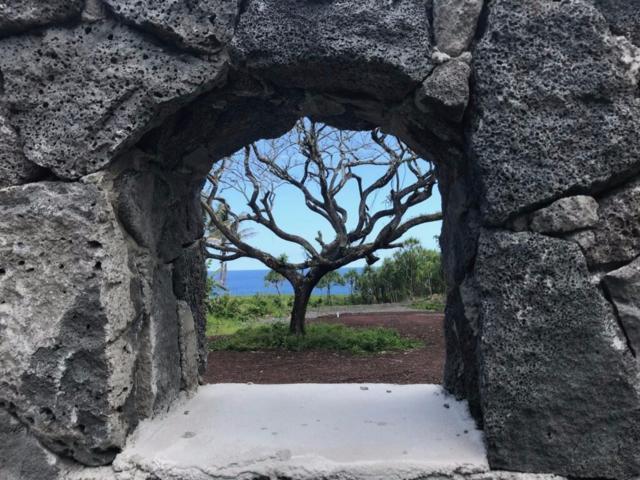 Government Beach Rd, Pahoa, HI 96778 (MLS #628963) :: Aloha Kona Realty, Inc.