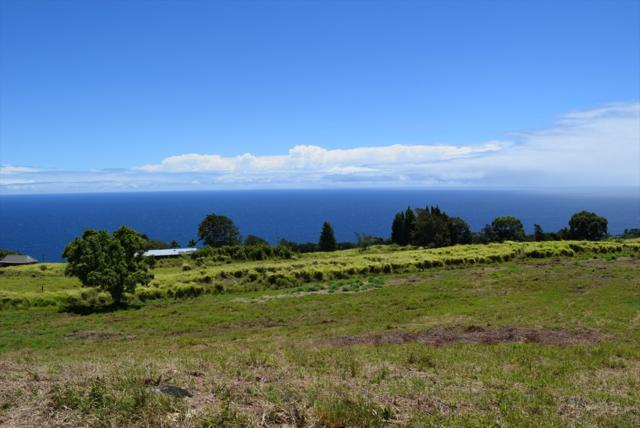 Spencer Rd, Laupahoehoe, HI 96764 (MLS #629089) :: Elite Pacific Properties