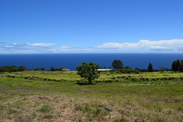Spencer Rd, Laupahoehoe, HI 96764 (MLS #629091) :: Song Real Estate Team | LUVA Real Estate