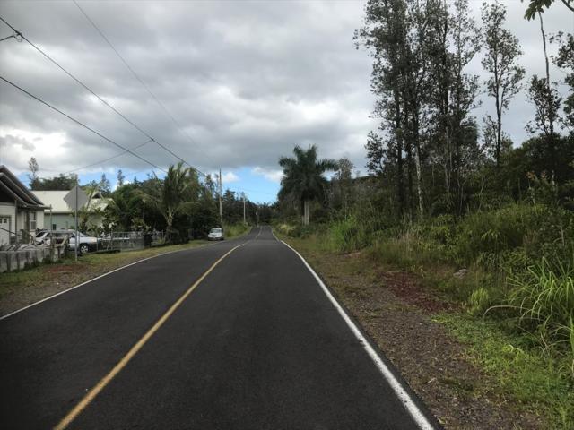 Tree Fern Dr, Pahoa, HI 96778 (MLS #629152) :: Elite Pacific Properties