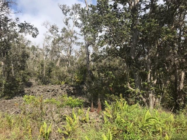 Address Not Published, Ocean View, HI 96704 (MLS #629170) :: Aloha Kona Realty, Inc.