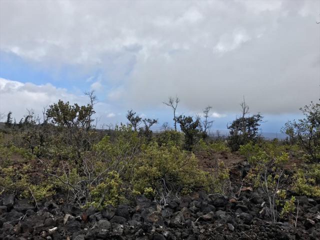 Ocean View Pkwy, Ocean View, HI 96704 (MLS #629173) :: Aloha Kona Realty, Inc.