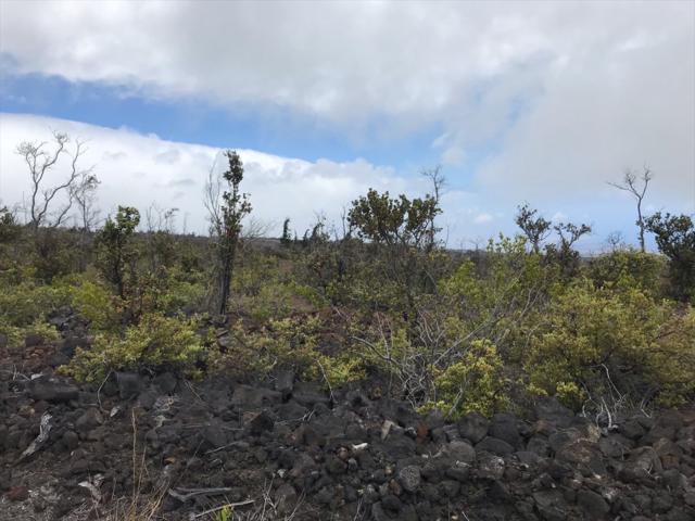 Ocean View Pkwy, Ocean View, HI 96704 (MLS #629174) :: Aloha Kona Realty, Inc.