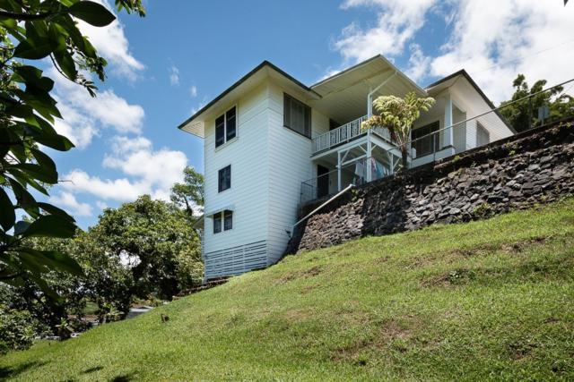 193 Halai St, Hilo, HI 96720 (MLS #629218) :: Song Real Estate Team/Keller Williams Realty Kauai