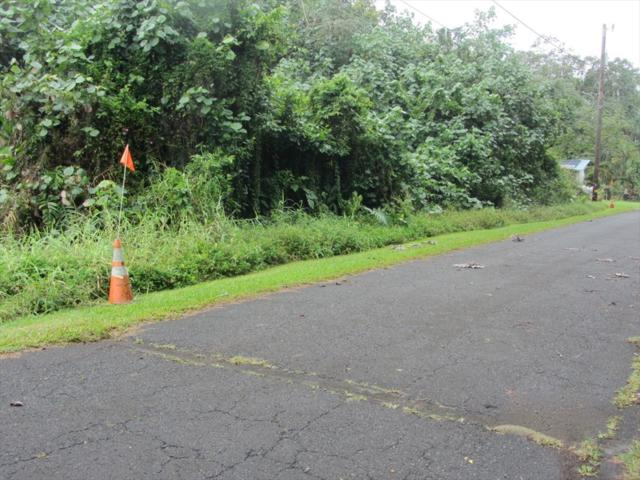 N Nehu St, Pahoa, HI 96778 (MLS #629220) :: Aloha Kona Realty, Inc.