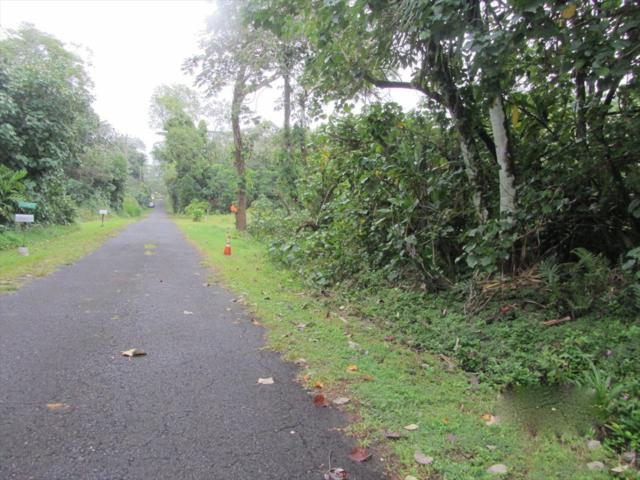 N Ohiki St, Pahoa, HI 96778 (MLS #629233) :: Song Real Estate Team/Keller Williams Realty Kauai