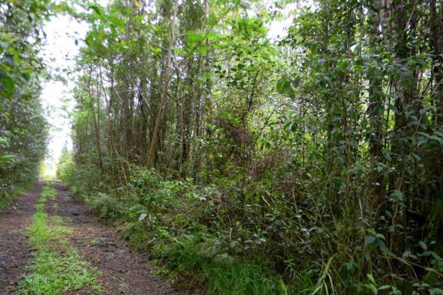 Sandalwood Ct, Kurtistown, HI 96760 (MLS #629267) :: Song Real Estate Team/Keller Williams Realty Kauai