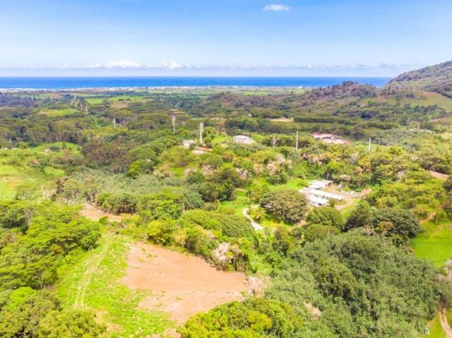 Hauiki Road, Kapaa, HI 96746 (MLS #629420) :: Elite Pacific Properties