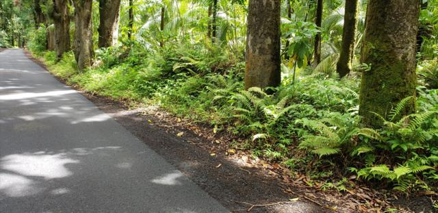Old Government Rd, Pahoa, HI 96778 (MLS #629541) :: Aloha Kona Realty, Inc.