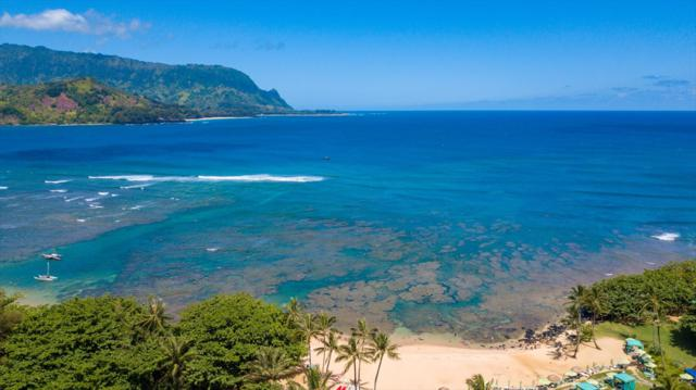 5380 Honoiki Rd, Princeville, HI 96722 (MLS #629543) :: Elite Pacific Properties