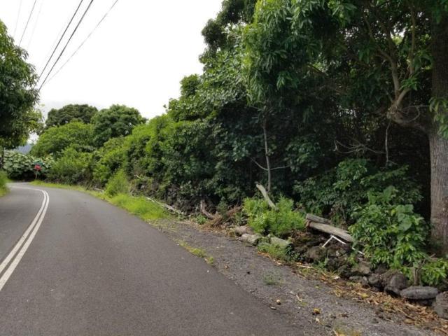 Tomi Tomi Drive, Kailua-Kona, HI 96740 (MLS #629577) :: Aloha Kona Realty, Inc.
