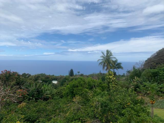 Address Not Published, Holualoa, HI 96725 (MLS #629581) :: Aloha Kona Realty, Inc.