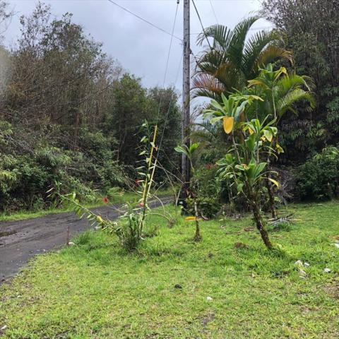 18-1222 Kukui Pl, Mountain View, HI 96771 (MLS #629621) :: Song Real Estate Team/Keller Williams Realty Kauai
