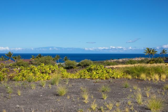 72-3216 Ilima Papa Pl, Kailua-Kona, HI 96740 (MLS #629650) :: Song Real Estate Team/Keller Williams Realty Kauai
