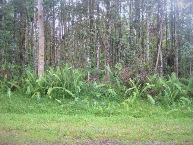 Pahoa Rd, Pahoa, HI 96778 (MLS #629700) :: Song Real Estate Team/Keller Williams Realty Kauai