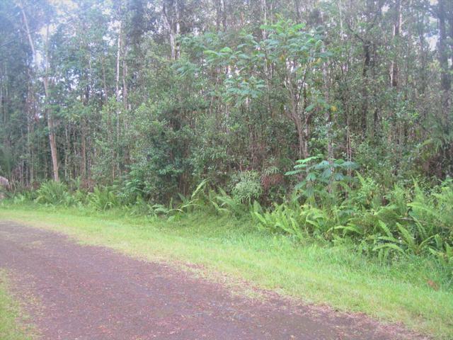 Pahoa Rd, Pahoa, HI 96778 (MLS #629701) :: Song Real Estate Team/Keller Williams Realty Kauai