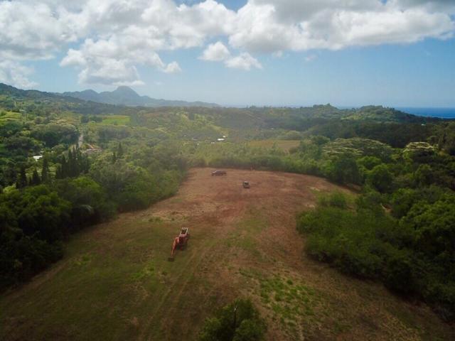 Kaumualii Hwy, Kalaheo, HI 96741 (MLS #629712) :: Kauai Exclusive Realty