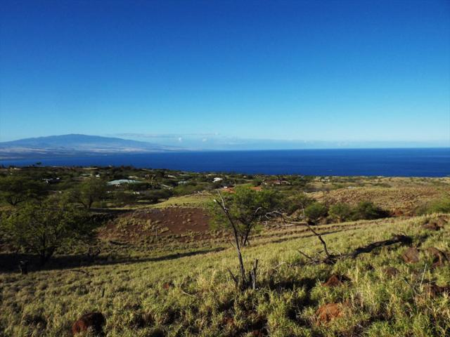 Kaala Rd, Kamuela, HI 96743 (MLS #629806) :: Song Real Estate Team/Keller Williams Realty Kauai