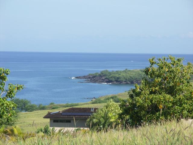 59-119 Kihi Kihi Pl, Kamuela, HI 96743 (MLS #629883) :: LUVA Real Estate