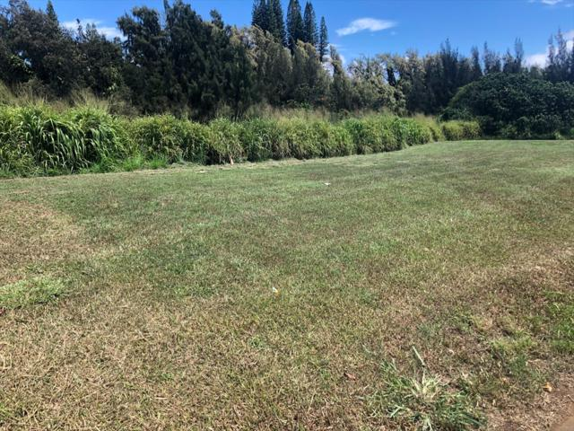 Address Not Published, Kapaau, HI 96719 (MLS #629960) :: Song Real Estate Team | LUVA Real Estate
