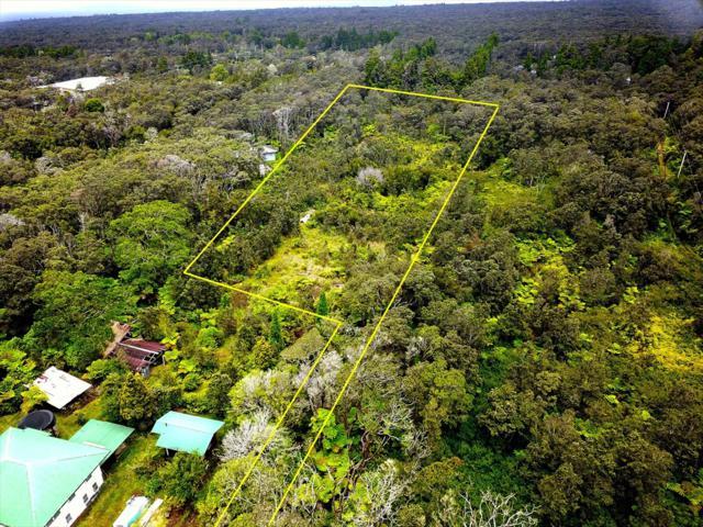 Kilauea Rd, Volcano, HI 96785 (MLS #629968) :: LUVA Real Estate