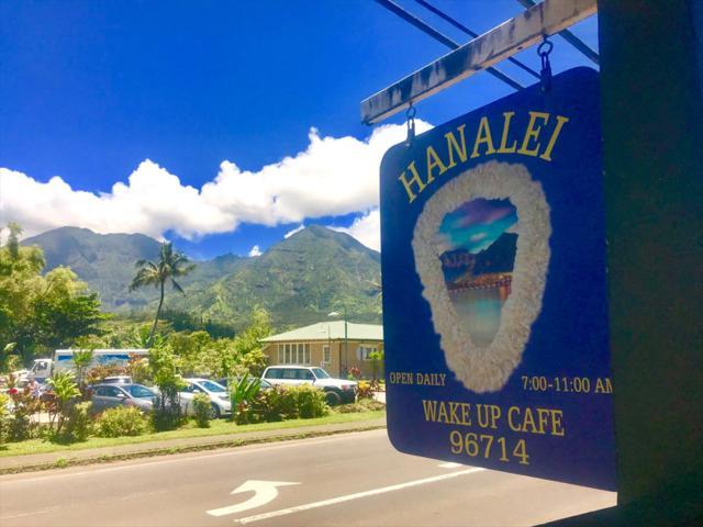 5-5144 Kuhio Hwy (Hanalei), Hanalei, HI 96722 (MLS #629989) :: Elite Pacific Properties