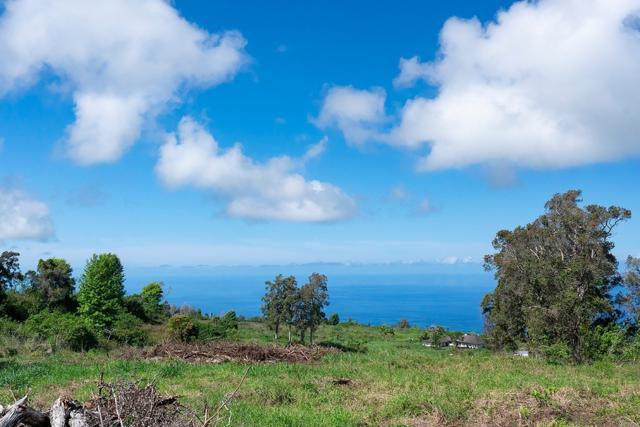 75-5400 Nanaina Pl, Holualoa, HI 96725 (MLS #630021) :: Song Real Estate Team/Keller Williams Realty Kauai