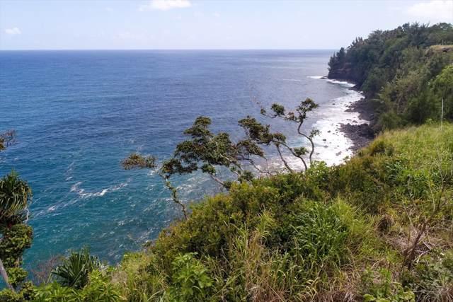 32-2619 Pali Ku Pl, Ninole, HI 96780 (MLS #630058) :: Elite Pacific Properties