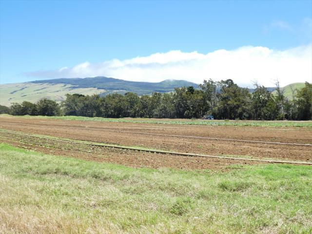 66-1311 Lalamilo Farm Road, Kamuela, HI 96743 (MLS #630087) :: Iokua Real Estate, Inc.