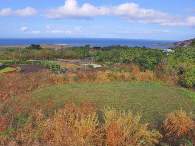 Kanele St, Captain Cook, HI 96704 (MLS #630164) :: Song Real Estate Team/Keller Williams Realty Kauai